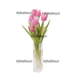 Toile Fine Art 20x30 - bunch of Tulips in a vase