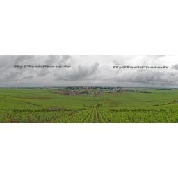 Toile Fine Art 20x30 - Panorama of the Wine of Vosne-Romanée, Bourgogne
