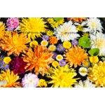 Panache of flowers