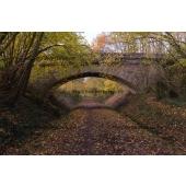 Bridge in Autumn #2